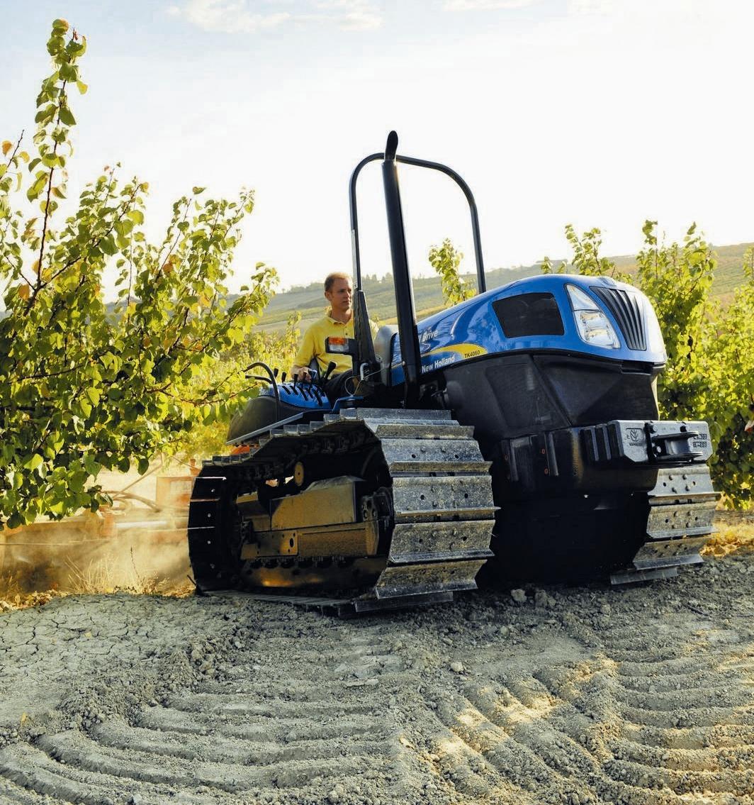 Imagen_para_noticia_agrícola.JPG